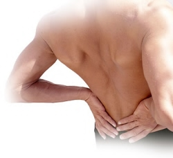 orgono silica back pain relief